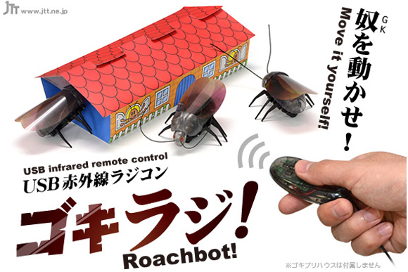 All the Joy and Splendor of Finding a Cockroach in Your Home Can Now Be Felt Anytime with Roachbot