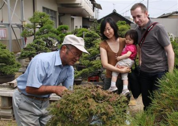 While Exports of Bonsai Increased 10 Fold Around the World, a Revival in Bonsai is Hoped for in Japan.