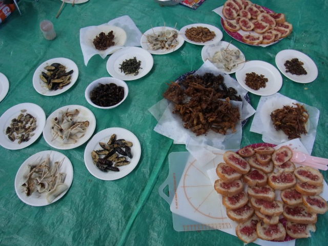 Tokyo Bug Eating Club to Hold Festival Tomorrow, Guess What's on the Menu?