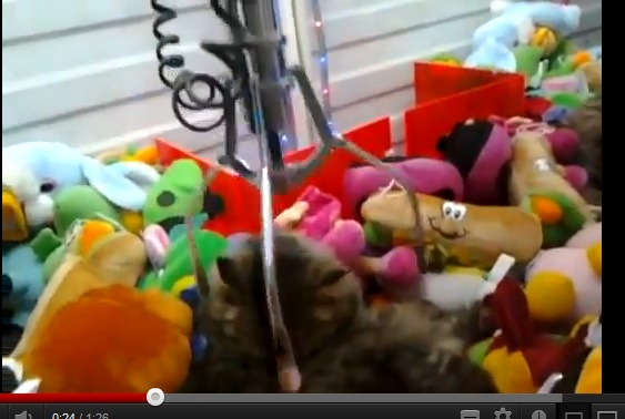 Expert Mode Claw Game Found in Russia
