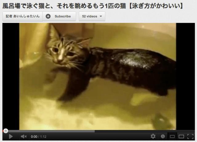 【Cat Video】Adorable Cat Swims in Bathtub