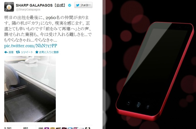 Sad Tweet from Sharp Galapagos Touches Japanese Twitterverse