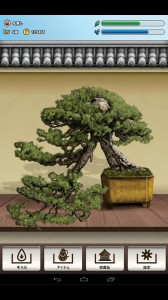 Want to Grow a Bonsai Tree? There's an App for That
