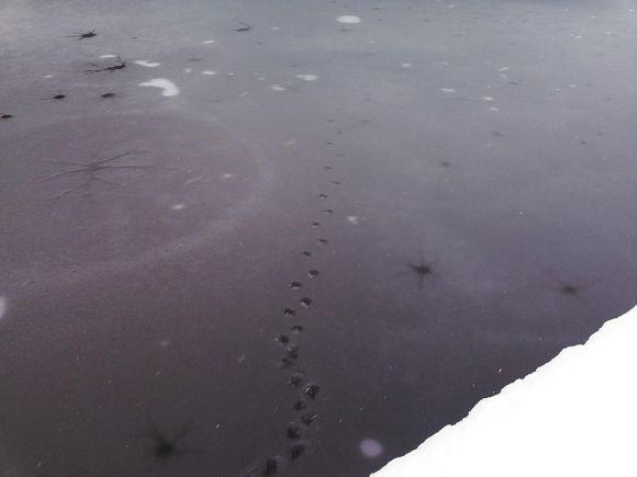 Frozen waves12