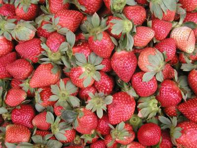 Warm Up Your Juicers! Substance Discovered in Strawberries Alleviates Allergy Symptoms