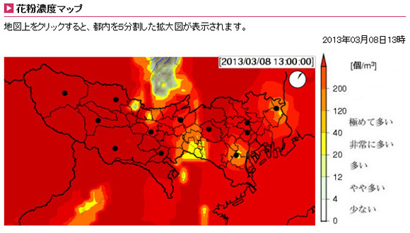 Hay Fever Sufferers, Stay Out of Tokyo, Pollen Density Levels Are Off the Charts