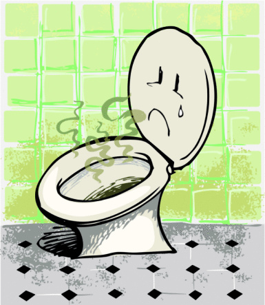 Nose for the Job? Shanghai Considering Introducing Public Restroom Odor Appraisers