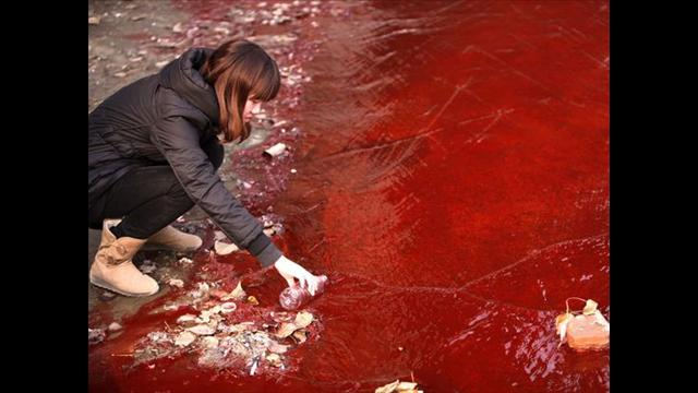 """It's Just like Red Bean Soup,"" Chinese Official Sacked after Trying to Downplay River Pollution Fears"