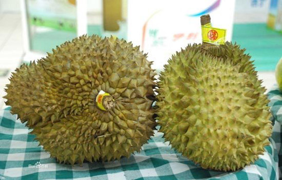 Woman Barred From Boarding Flight with Foul-Smelling Durian Flies into Rage, Angrily Chows Down in Middle of Airport