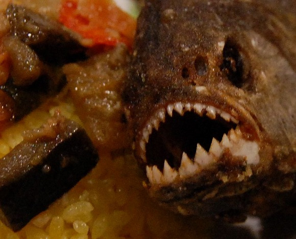 We Try Fried Piranha, Even Dead and Cooked It's Pretty Dangerous