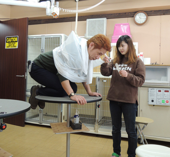 We Take Mr. Sato for a Shampoo and Trim at the Pet Salon 【Thrifty Style】