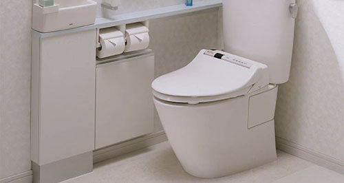 Theft of Toilet from Public Park in Kyoto Leaves Authorities Baffled