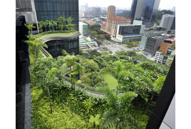Hanging Gardens of Singapore: the PARKROYAL on Pickering