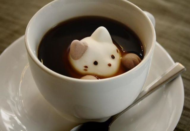 【TBT】Enjoy latte art at home with cute marshmallow cats!