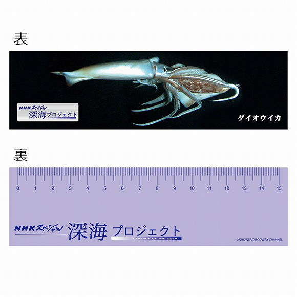 Cuddle up with a giant squid plush toy from NHK8