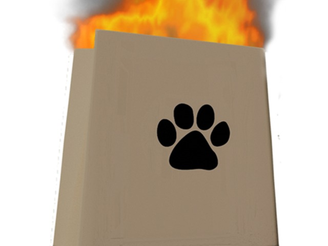 Two Japanese youths arrested for placing an exploding bag of dog poop in a local police box