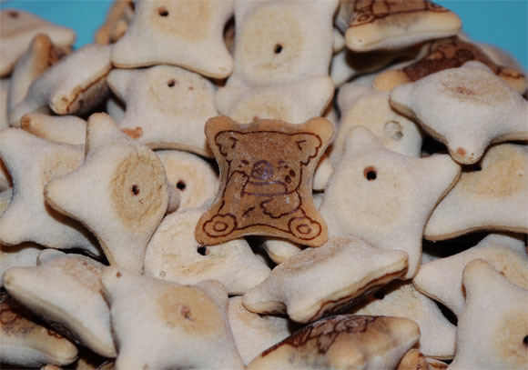 Today's trivia: Strange new koala spotted in packs of Koala's March cookies