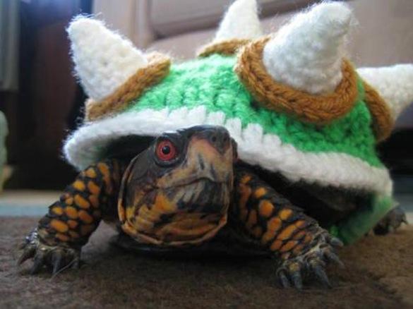 Crafty crochet turns tortoise into evil King Koopa