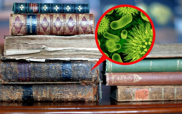 Saving book worms from book germs: Libraries install Bacteria Elimination Boxes
