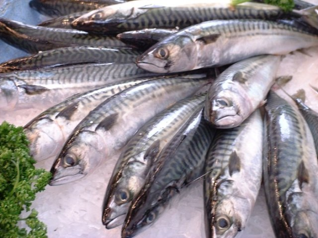 Scientists suspect eating more fish may help to curb anxiety