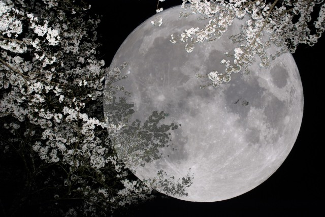 Supermoon coming on June 23, lovers and lycanthropes alike hoping for clear skies