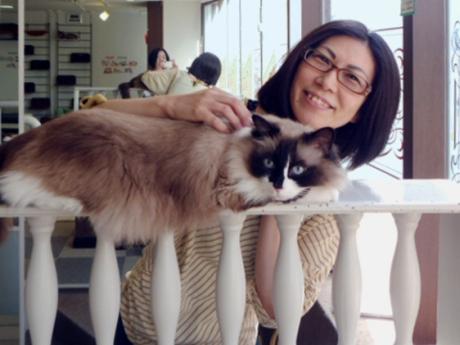 Pet sitting service extends into Nagoya, Japan