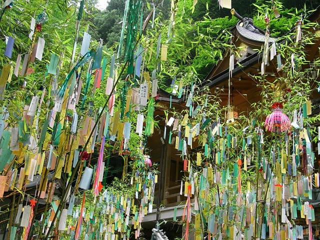 What did Japan wish for at this year's Tanabata festival?