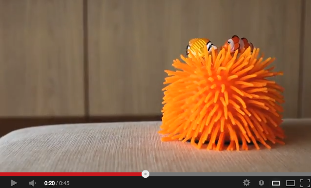 New undulating sea anemone toy from Japan will have you staring for hours