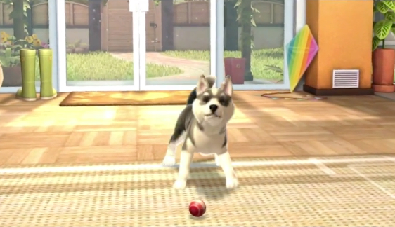 Nintendogs coming to a PlayStation Vita near you?