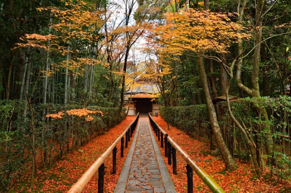 12 of the best places in Kyoto to enjoy the autumn colors