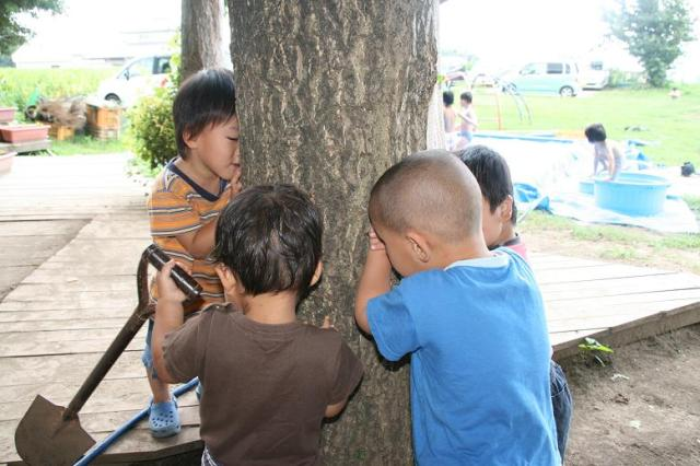Not your average game of hide-and-seek: Japanese kids go high-tech!
