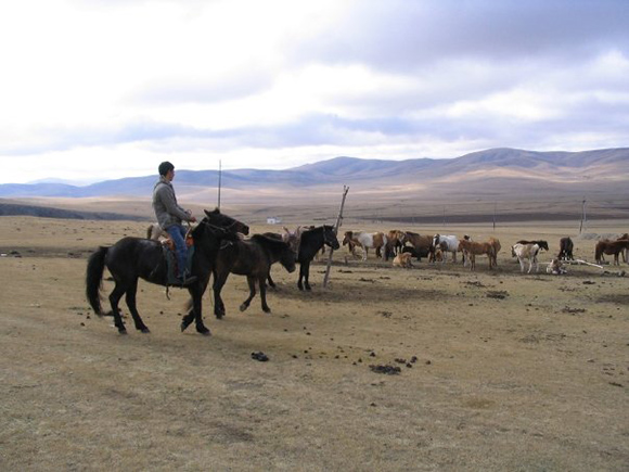 Why reading their own language gives Mongolians a headache