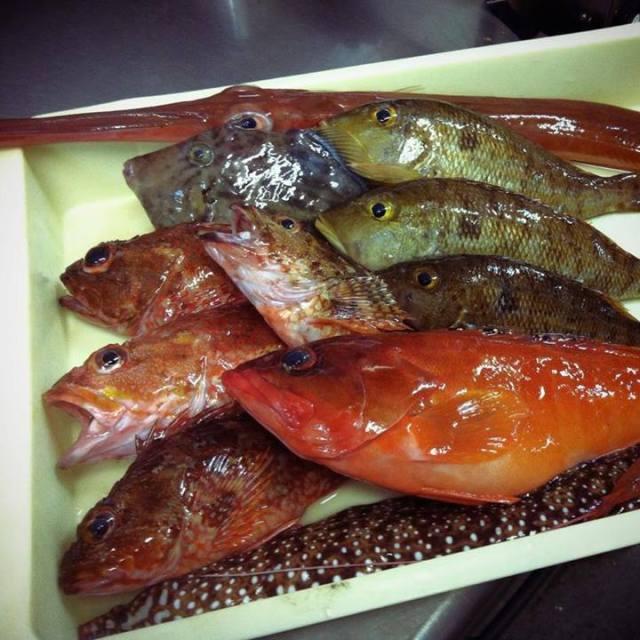 Need extra yen? Conveyor belt sushi restaurant will buy your freshly-caught fish!
