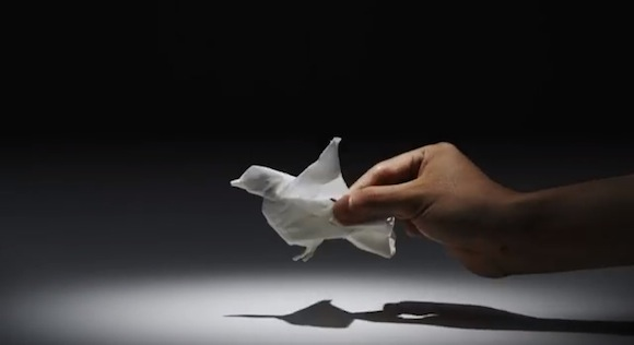 Amazing video wows viewers — see the fascinating world created with a single piece of tissue paper!