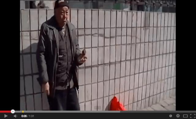Beijing man and tiny bird team up to make money