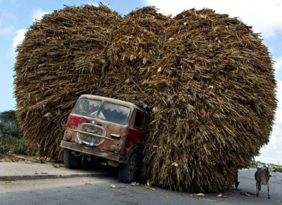 SOMALI TRUCK LOADED WITH CORN PARKED ON STREET IN MOGADISHU.