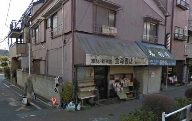 Hang in there, Baby!: Cat clinging to wall in Tokyo caught on Google Maps