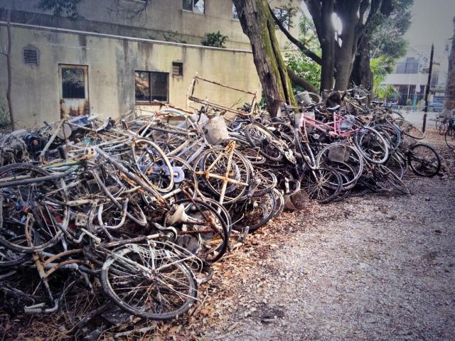 How many abandoned bicycles can fit in just one Tokyo pond?
