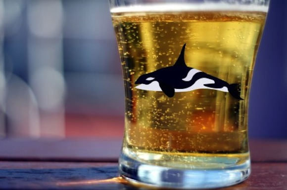 Moby Drink: Iceland creates a beer made with endangered whale bones, can't sell it
