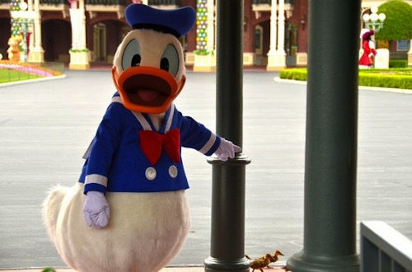 Too cute! Donald plays with real-life feathered friends at Tokyo Disney 【Photos】