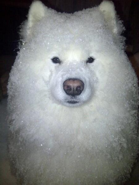 snowman (20)