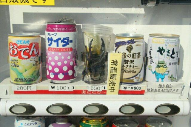 Aged vending machine in Tokyo appears to sell stag beetles