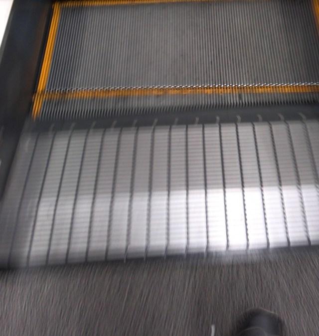 South Korea establishes special task force to combat escalators and elevators
