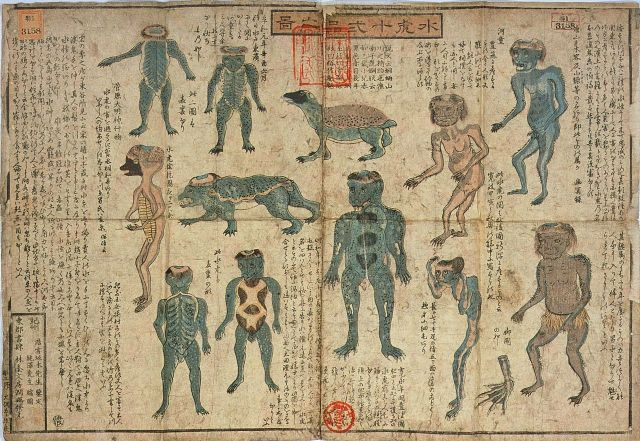 Bones of mythical Japanese water demon to go on public display