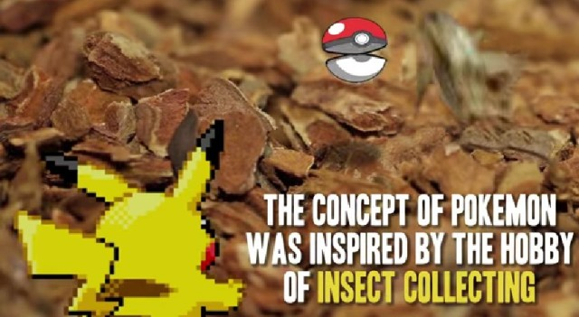 You don't know Pokémon: 14 little-known facts about your favorite monster collecting series