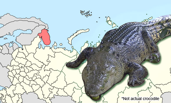 Russian crocodile hospitalized after woman falls on it
