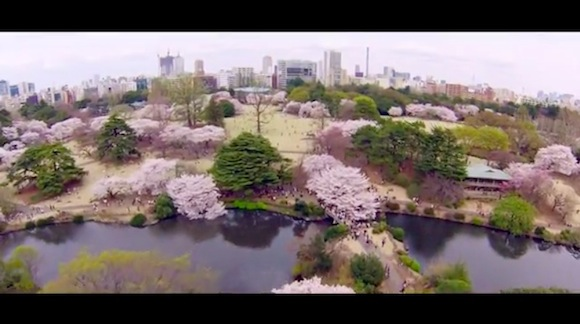 Japan video 5