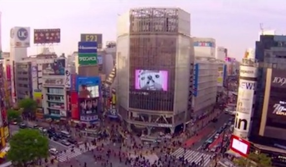 Take a look at Japan from a whole new angle — from the air! 【Video】