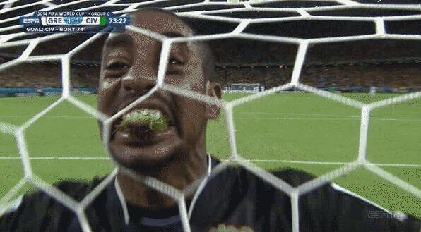 Ivory Coast's grass-eating goalie amuses Japanese fans after elimination