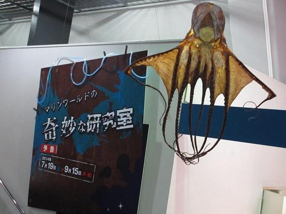 alien stingray 2